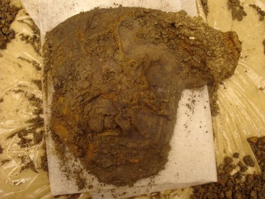 Hallaton Roman Helmet. Cheek piece during soil removal (copyright of British Museum).