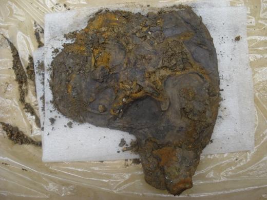 Hallaton Roman Helmet. Cheek piece during conservation (copyright of the British Museum).