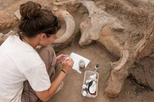 Conserving the plastered bucranium at Catalhoyuk